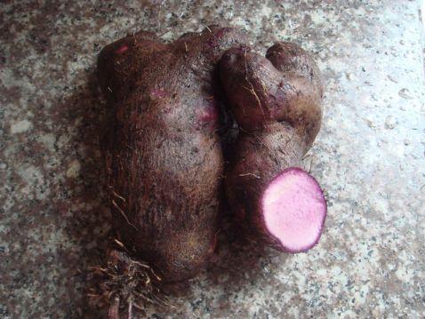 五花肉闷紫薯IA.jpg