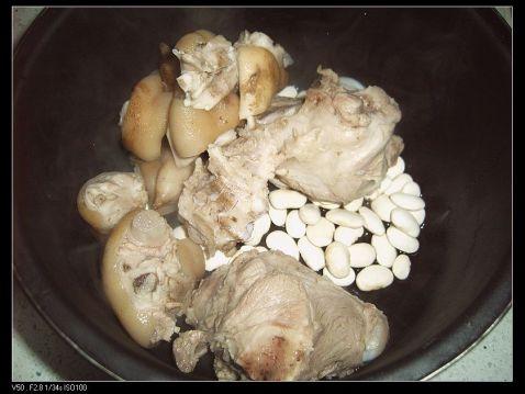 猪蹄骨骼结构图片
