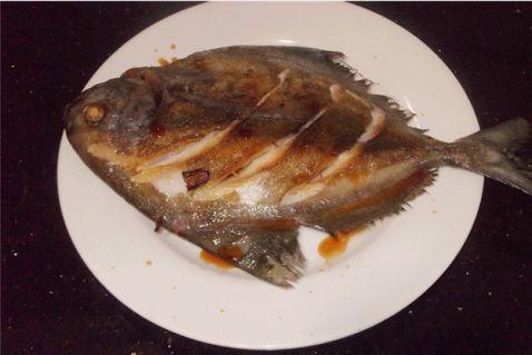 茄汁香煎黑老人胃食谱鲳鱼养做法家常菜图片