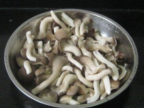 鸡丝秀珍菇蛋汤GD.jpg