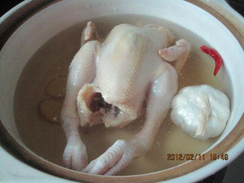 香菇童子鸡TS.jpg