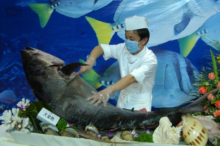 壁纸 动物 海底 海底世界 海洋馆 水族馆 鱼 鱼类 750_499