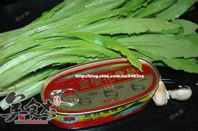 鲮鱼油麦菜Xq.jpg