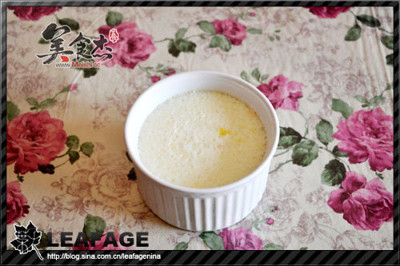 木瓜炖奶vX.jpg