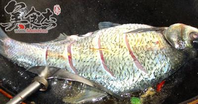 紅燒鯽魚MV.jpg