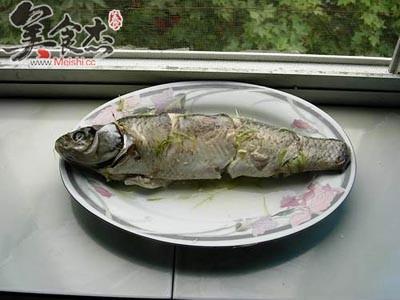 清蒸草鱼ol.jpg