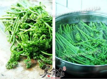 凉拌蕨菜df.jpg