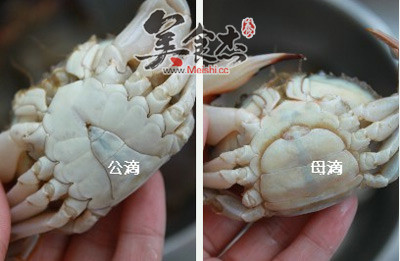 清蒸螃蟹FW.jpg