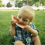 宝宝吃蔬菜的10大误区