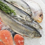 鱼虾冷冻保鲜的3个方法