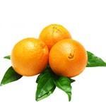 怎样挑选酸甜可口的脐橙?