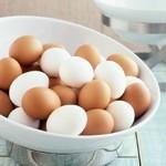 怎样挑选新鲜的鸡蛋?