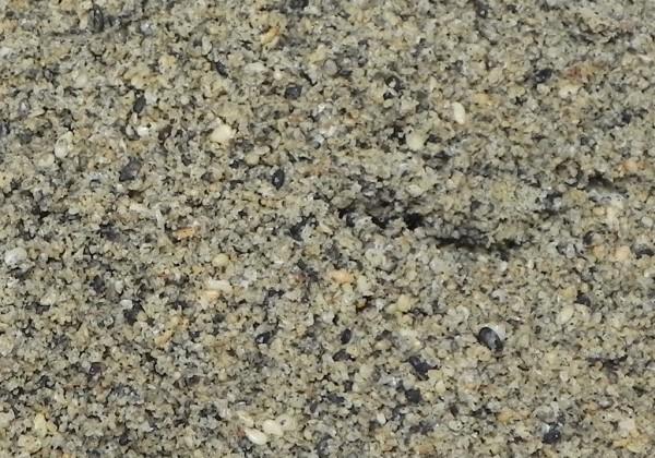 黑白芝麻鹽WS.jpg