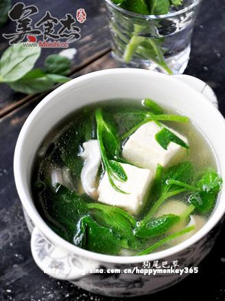豌豆尖蘑菇豆腐汤