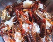 小龙虾焖丝瓜gZ.jpg