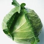 辐射当前教你如何吃安心蔬菜