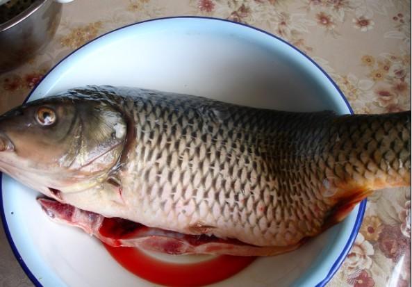 家常鲤鱼的做法