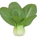 蔬菜选购有技巧