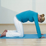 孕中期健美体操