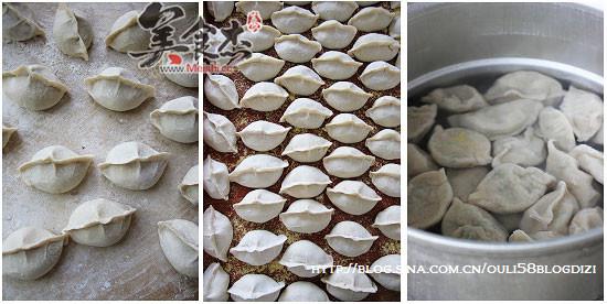 鲅鱼水饺tx.jpg