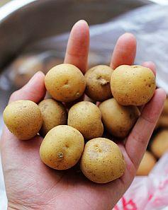 土豆仔炖脊骨fc.jpg