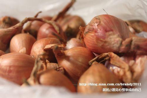 红葱豆豉烧排骨KW.jpg