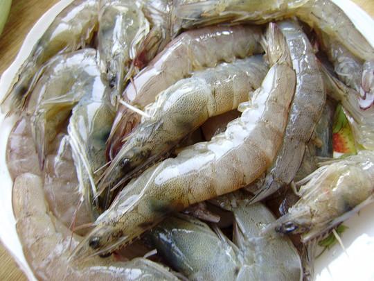 水墨画青虾步骤