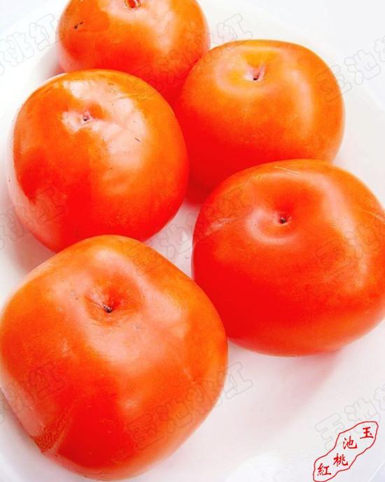 柿子饼me.jpg