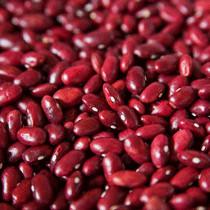 芸豆(红)