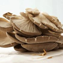 糕点糖尿病人的平菇怎样做图片