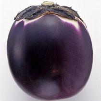 茄子(紫皮,圆)