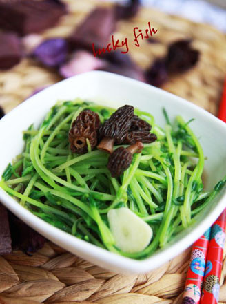 羊肚菌浓汤煨豆苗的做法