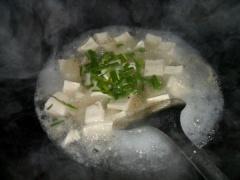 豆腐汤sp.jpg