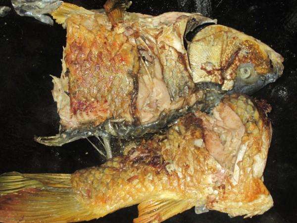 大蒜焖鲤鱼图片