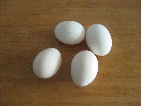 四个鸡蛋简笔画