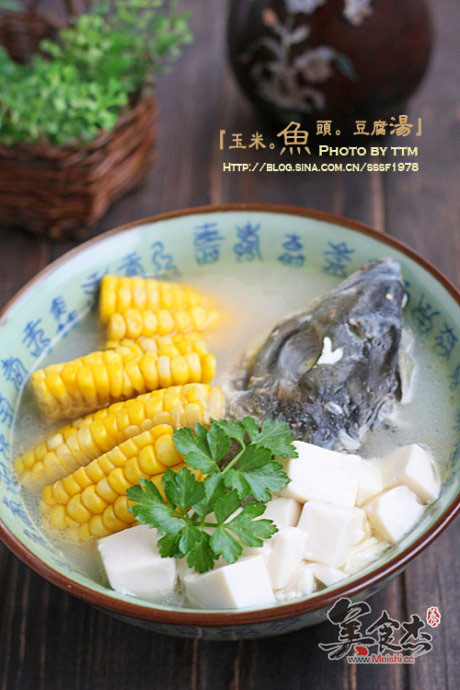 玉米鱼头豆腐汤To.jpg