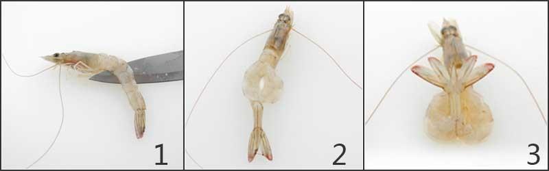 虾造型.jpg