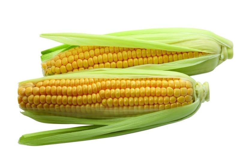 鲜玉米.jpg