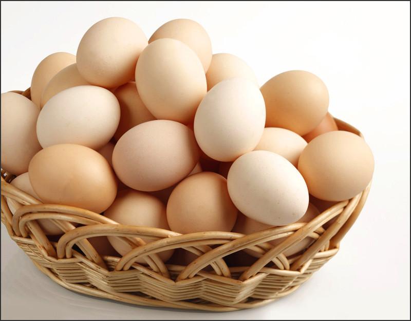 鸡蛋价格上涨,每斤突破4元