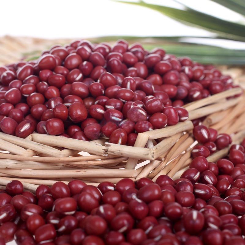赤小豆.jpg