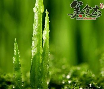 绿色展板排毒背景