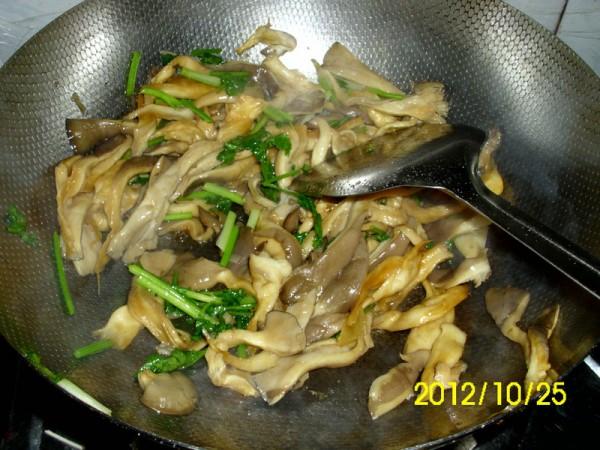 素炒蘑菇cl.jpg