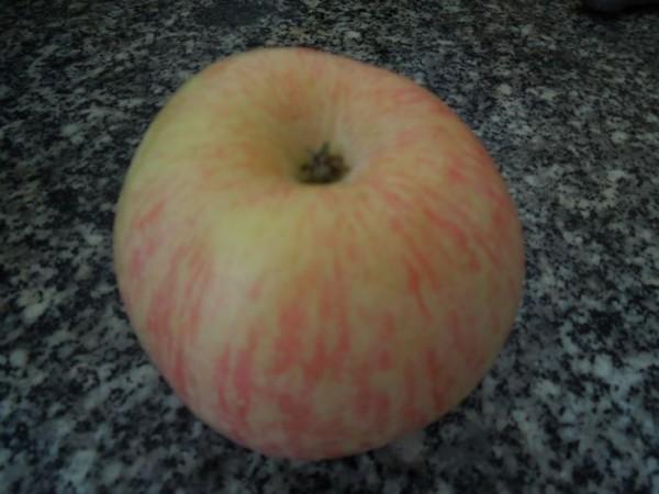 苹果银耳炖鸭肾汤dT.jpg