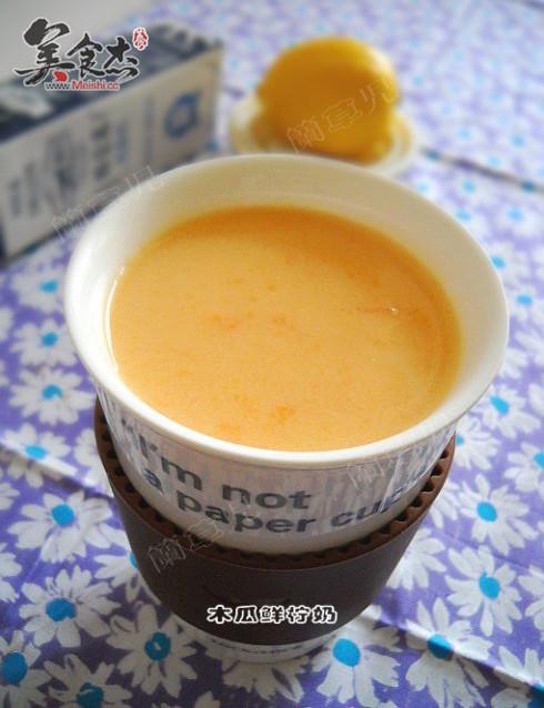 木瓜鲜柠奶Fs.jpg