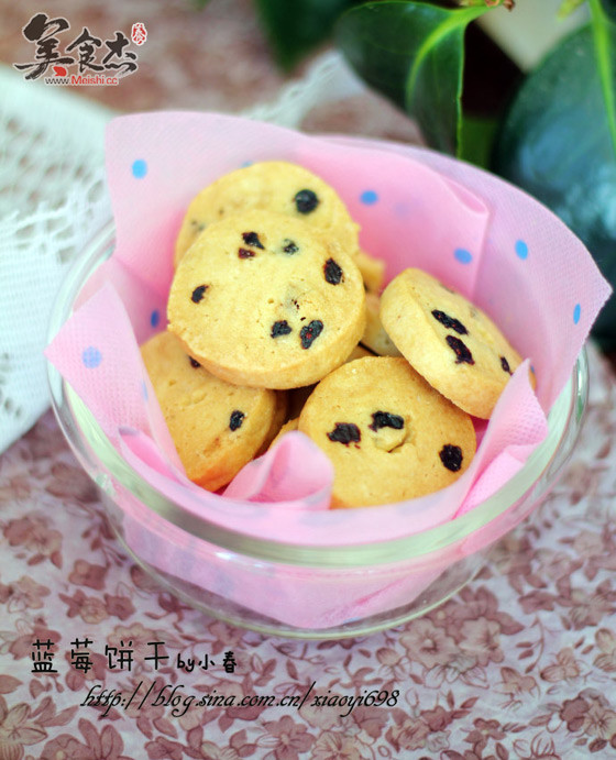蓝莓饼干Zw.jpg