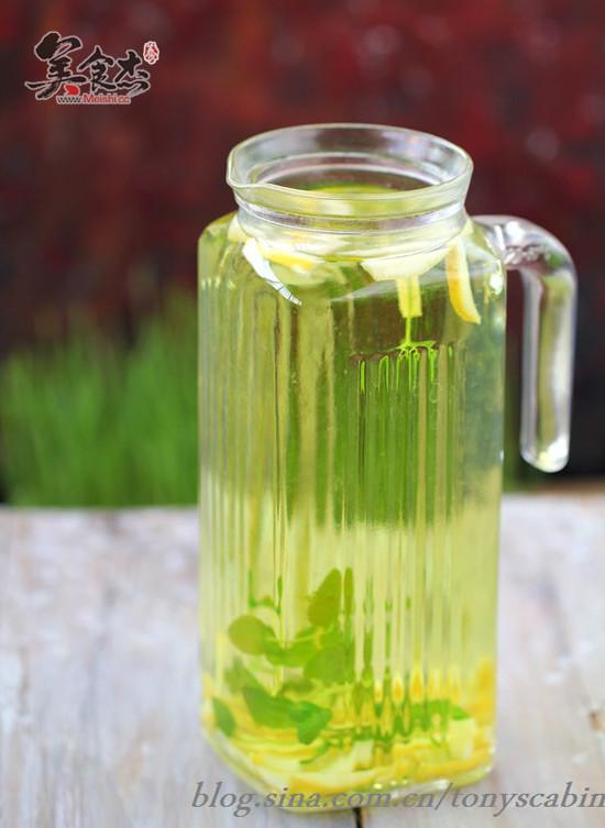 柠檬薄荷蜂蜜水的做法【步骤图】_菜谱_美食杰