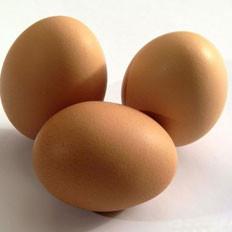 新鲜鸡蛋如何保存?