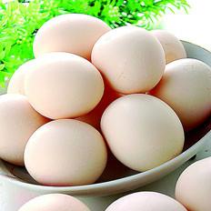 教你怎么挑选新鲜鸡蛋?