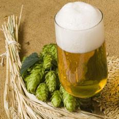 啤酒的七大功效你知道吗?