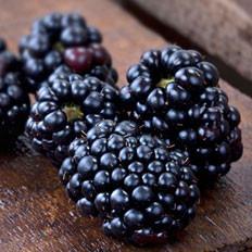 10种滋阴补肾的食物